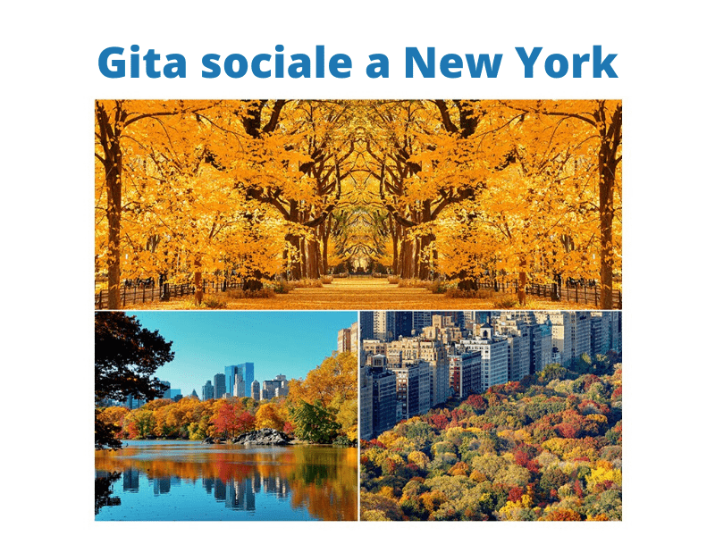 Gita sociale New York
